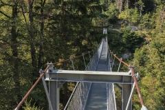 Le nouveau pont suspendu (2013) relie les deux versant du Morgetenbach dont la source est à Grenchengalm.